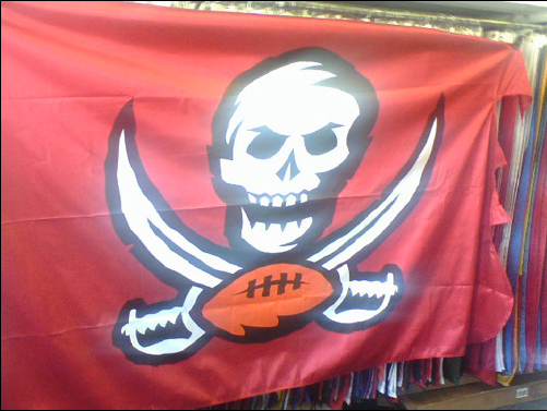 tampa Custom Printed Polyester Flag